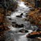 McNeil Creek