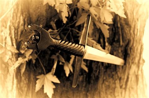 Bastard Sword_HDR2Bastard Sword sm