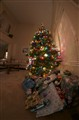 A Fisheye Christmas