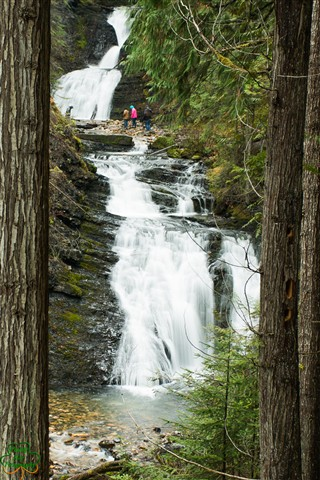 Sweet Creek Falls