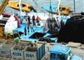 Manta Ecuador - Unloading the Tuna Catch