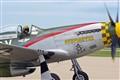 Gunfighter 3317