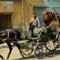 Horse Carriage Driver at Edfu Egypt