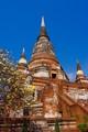 Chedi Chai-mongkol (1592), Wat Yai Chai-mongkol (1357), Ayutthaya, Thailand