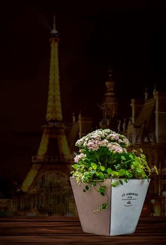 Un souvenir de Paris