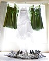 Shoes&Gowns