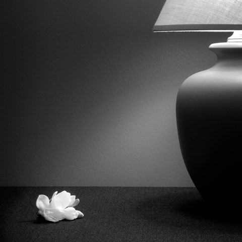 Lamp and Flower