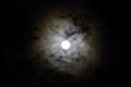 Moon-Eye