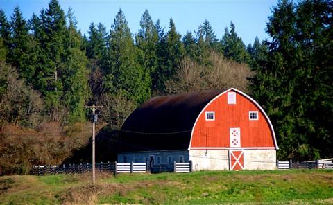 barn shots 001 -1