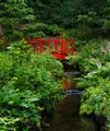Little Red Bridge