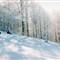 Ski Predeal Film Fuji ieftin ISO200 Rollei 35B -19