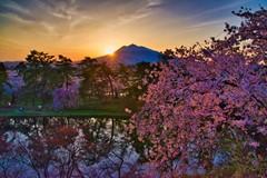 Hirosaki Park_Japan