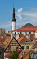 Roof top view of Tallinn