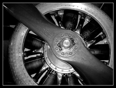 fleet airarm museum 049