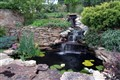 Backyard Fountain and Garden