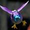 Really Strange bird