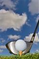 golf_5517