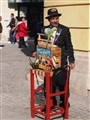 barrel organ man