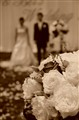 Wedding in Sepia