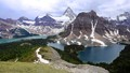 Mt. Assiniboine from the Nublet