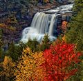 Fall at blackwater falls