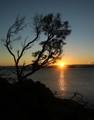 Swansea sunrise 2