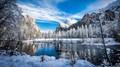 Merced River Snowscape
