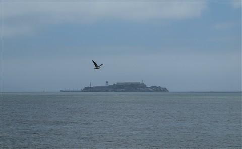 Alcatraz 01 c