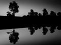 Five Pond