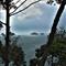 samui-island-view-through-trees[1]