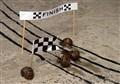 Snale Racing