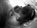 Puppy Harmony