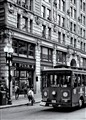 Boston Trolley