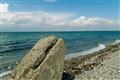 Whale stone