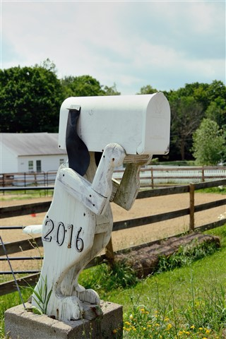 Snoopy Mailbox (The Scream)