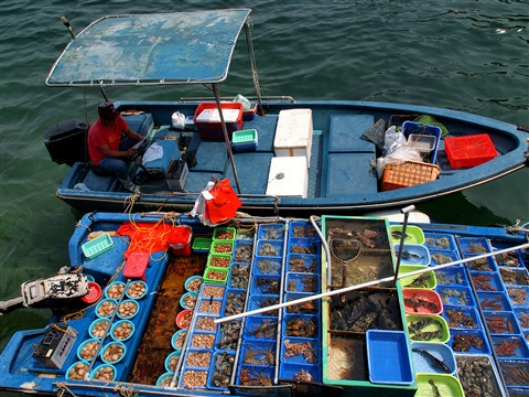 Floating fish market