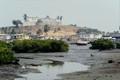 Elmina Estuary