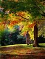 Fall cyclist