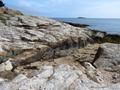 The Atlantic Coast of Maine