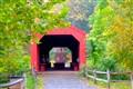 The historic Oberlin Bridge