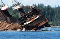 The Boom boat looks perilously close to the Log Barge as it dumps its load into the Pacific Ocean.