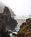 Point Lobos Marine Reserve