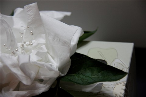 Tissue Flower 6 for submission