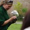 Falconry - barn owl