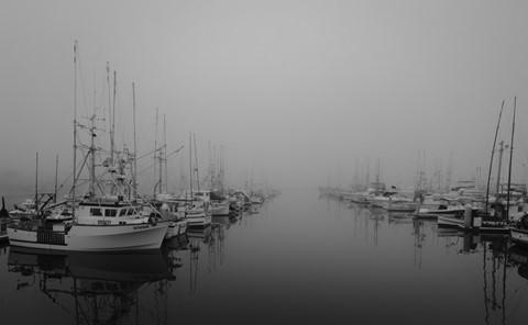 Harbor-Mist-b-w
