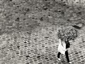 Cobblestones & Umbrella