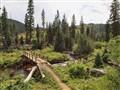Wilderness Trail Crossing