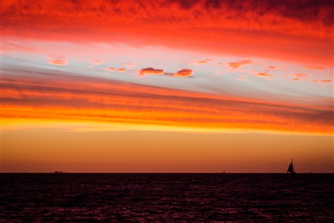 Sails in the Red Sunset