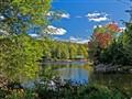 Early Fall at the Lake