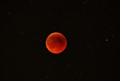 IMG_1905_Lunar Eclipse 2011